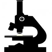 histology mole testing